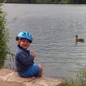 Krmím u nás na rybníku