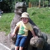 V zoo u goril
