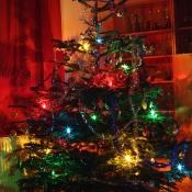 Náš stromeček
